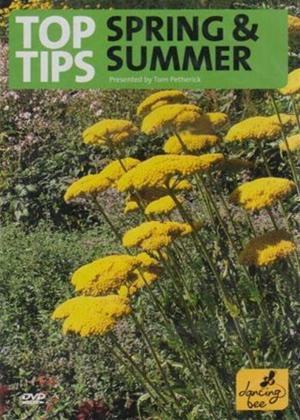 Top Tips for Spring and Summer Online DVD Rental