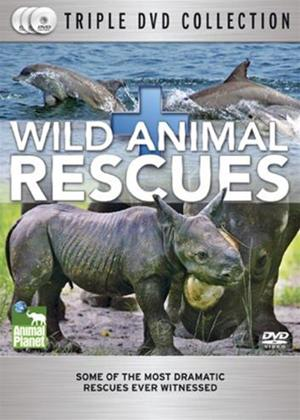 Wild Animal Rescue Online DVD Rental