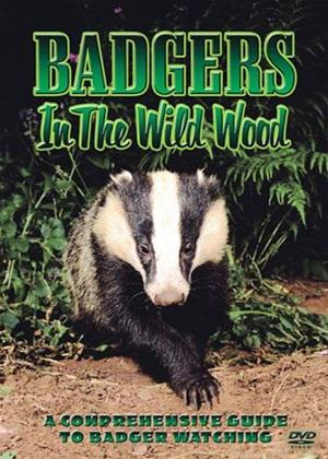 Badgers in the Wood Online DVD Rental