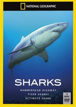 National Geographic: Sharks Online DVD Rental