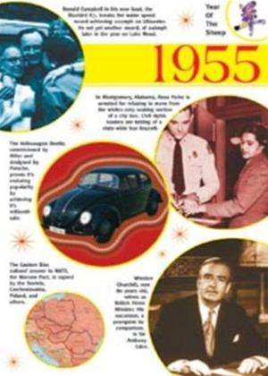 Rent The Time of Your Life: 1955 Online DVD Rental