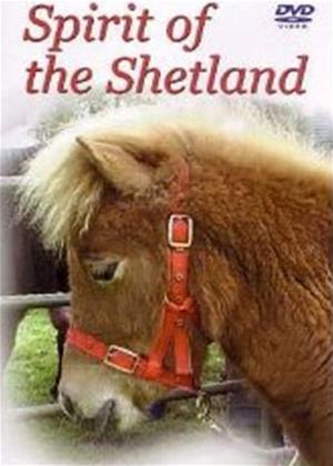 Spirit of the Shetland Online DVD Rental