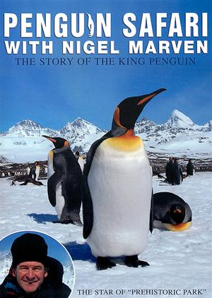 Nigel Marven: Penguin Safari Online DVD Rental