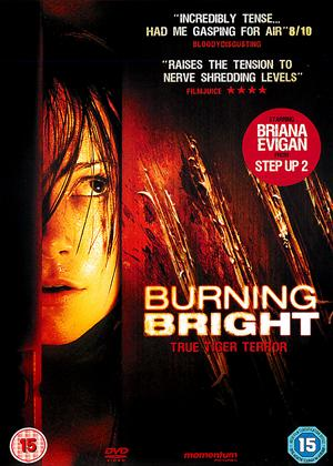 Rent Burning Bright Online DVD Rental