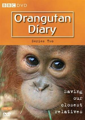 Rent The Orangutan Diaries: Series 2 Online DVD Rental
