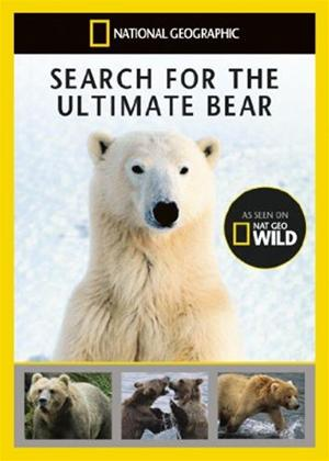 National Geographic: Search for the Ultimate Bear Online DVD Rental