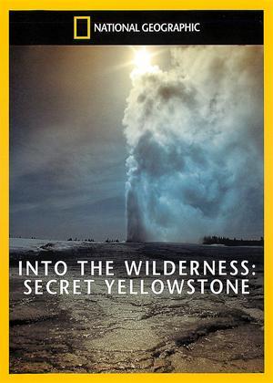 Rent National Geographic: Secret Yellowstone Online DVD Rental