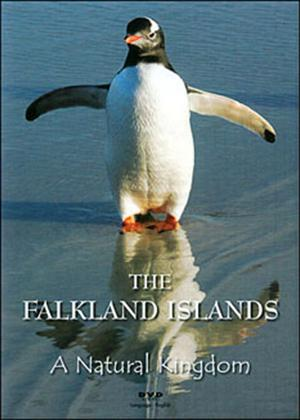 The Falkland Islands: A Natural Kingdom Online DVD Rental
