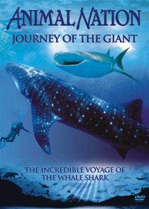 Animal Nation: Journey of the Giant Online DVD Rental