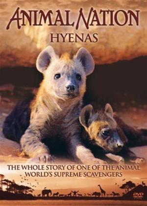 Rent Animal Nation: Hyenas Online DVD Rental