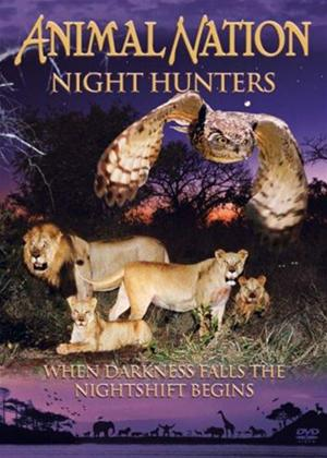 Animal Nation: Night Hunters Online DVD Rental
