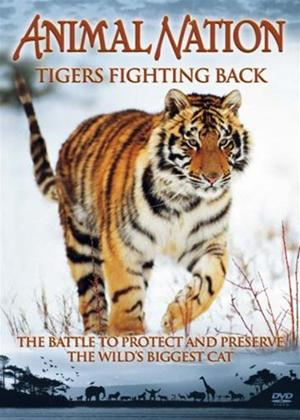 Animal Nation: Tigers Fighting Back Online DVD Rental