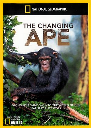 Rent National Geographic: The Changing Ape Online DVD Rental
