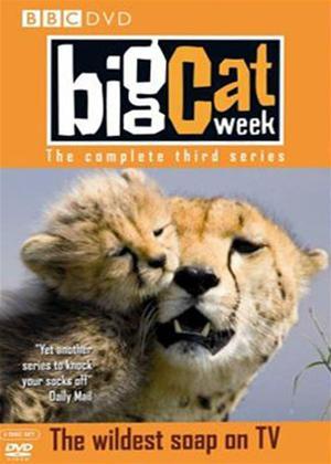 Rent Big Cat Week: Series 3 Online DVD Rental