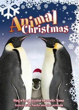 Rent National Geographic: Animal Christmas Online DVD Rental