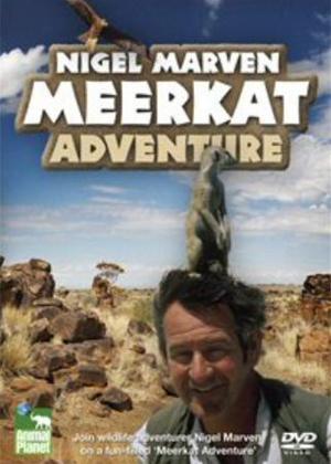 Meerkat Adventures Online DVD Rental