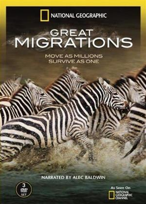National Geographic: Great Migrations Online DVD Rental