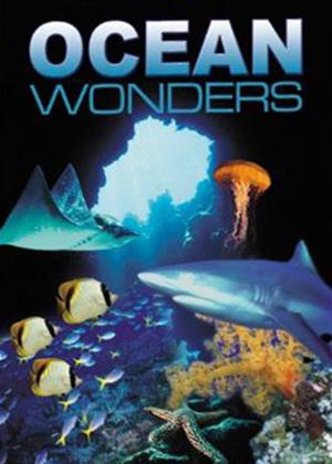 Rent Ocean Wonders Online DVD Rental