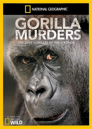 National Geographic: Gorilla Murders: Lost Gorillas of Virunga Online DVD Rental