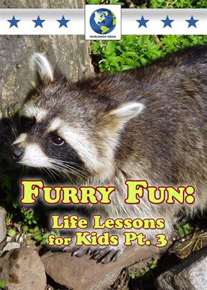 Furry Fun: Life Lessons for Kids: Vol.3 Online DVD Rental