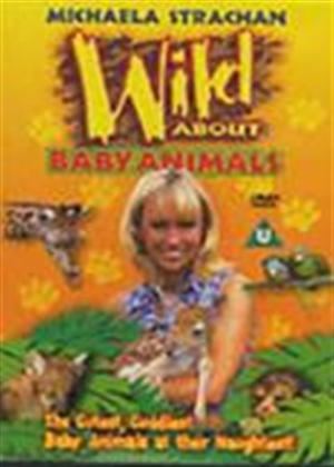 Rent Wild About Baby Animals Online DVD Rental