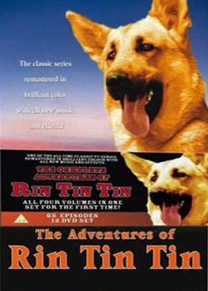 Rent Adventures of Rin Tin Tin: Complete Series Online DVD Rental