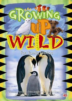 Rent Growing Up Wild Online DVD Rental