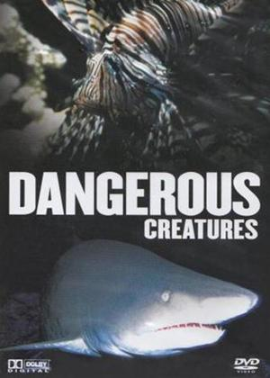 Rent Dangerous Creatures Online DVD Rental