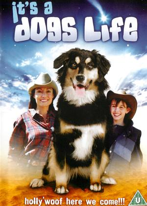 It's a Dog's Life Online DVD Rental