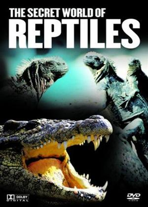 Rent Secret World of Reptiles Online DVD Rental