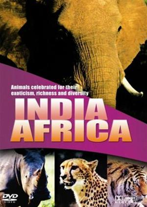 Rent Wildlife: India and Africa Online DVD Rental