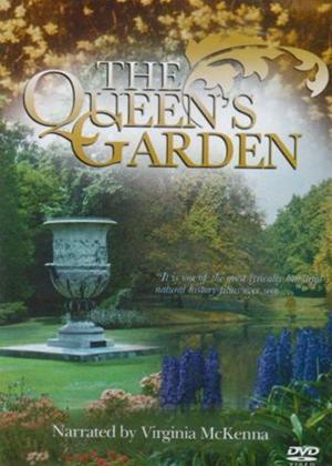 Rent Queens Garden Online DVD Rental