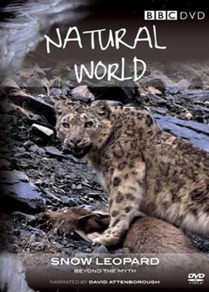 Natural World: Snow Leopard Online DVD Rental