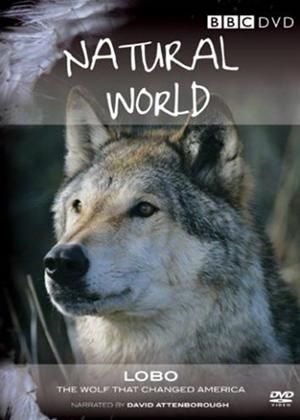 Natural World: Lobo the Wolf That Changed America Online DVD Rental