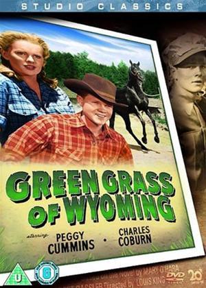 Rent Green Grass of Wyoming Online DVD Rental