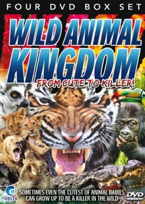 Wild Animal Kingdom: From Cute to Killer Online DVD Rental