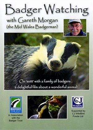 Rent Badger Watching with Gareth Morgan Online DVD Rental