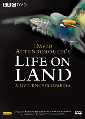 Rent Life on Land Online DVD Rental
