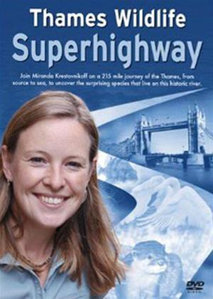 Thames Wildlife Superhighway Online DVD Rental
