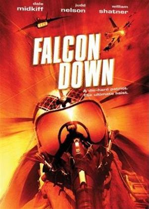 Falcon Down Online DVD Rental