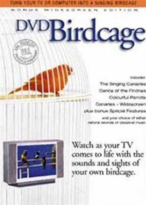 Rent DVD Birdcage Online DVD Rental