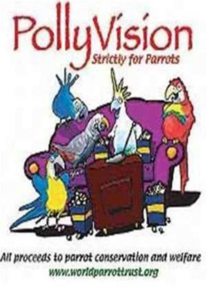 Rent Polly Vision Online DVD Rental