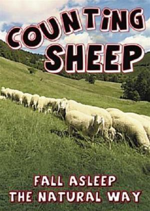 Rent Counting Sheep: Fall Asleep the Natural Way Online DVD Rental