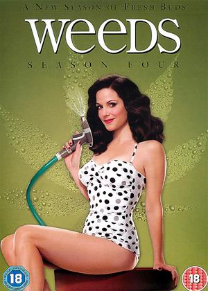 Rent Weeds: Series 4 Online DVD Rental