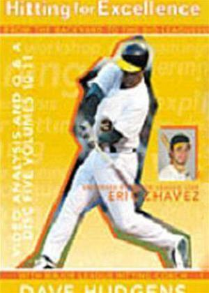 Hitting for Excellence: Video Analysis Online DVD Rental