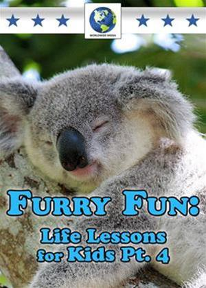 Rent Furry Fun: Life Lessons for Kids: Vol.4 Online DVD Rental