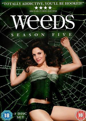 Weeds: Series 5 Online DVD Rental