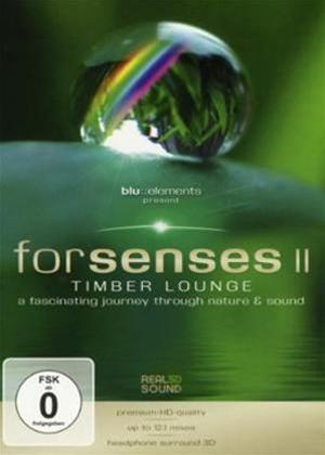 Rent Blu Elements Project: Forsenses II Online DVD Rental