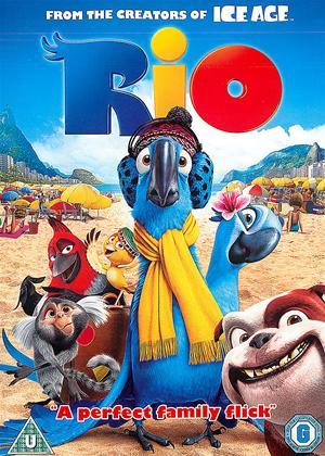 Rio Online DVD Rental