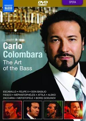 Rent Carlo Colombara: The Art of the Bass Online DVD Rental